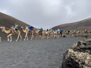 Turistas disfrutando de un paseo montados en camello. Foto: Michael Valdivia